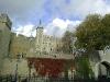 Londono Taueris.
